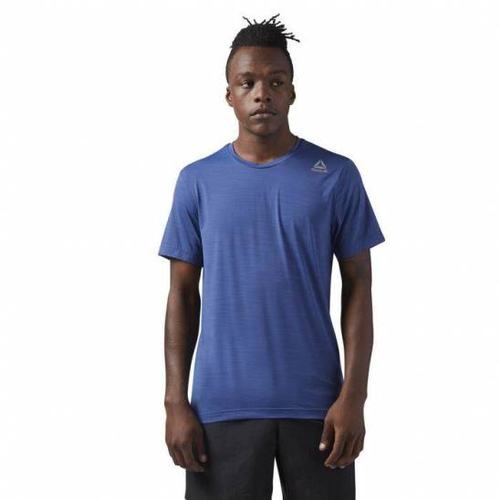 Pánské tričko SS AC TEE CE1289 - WORKOUT.EU 92e0bd317a