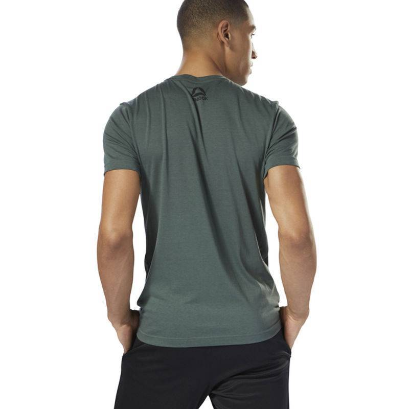 Pánské tričko GS OPP Reebok Decal Tee - DH3788 - WORKOUT.EU 577b9b6e7b