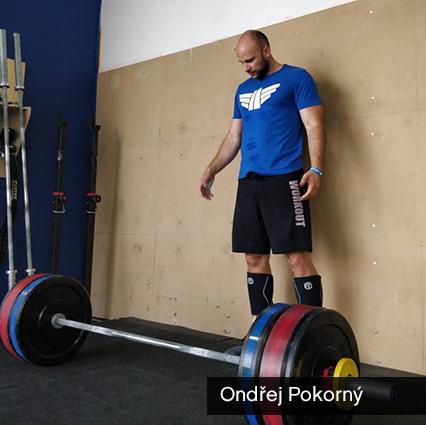 Pokorný - šortky Workout